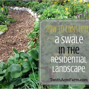How to Build a Swale
