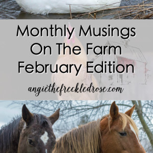Monthly Musings On The Farm-February Edition