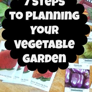 7 Steps to Planning your Vegetable Garden