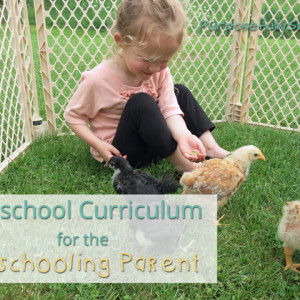 Homeschool Preschool Curriculum for the Unschooling Parent