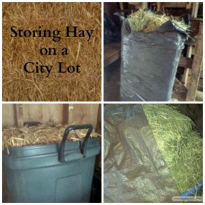 Storing Hay Bales on a City Lot