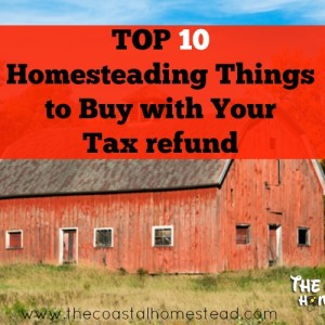 Tax Returns: Top 10 Homesteading Things to Buy with Your Refund