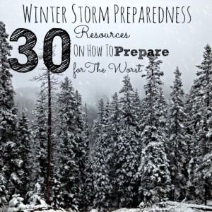 30 Winter Storm Preparedness Resources
