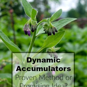Dynamic Accumulators: Proven Method of Promising Idea?