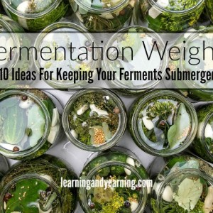 Fermentation Weights: 10 Ideas For Keeping Your Ferments Submerged