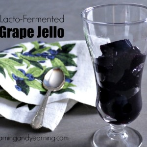 Homemade Lacto-Fermented Grape Jello Homemade Lacto-Fermented Grape Jello