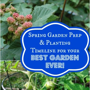 Spring Garden Prep, Planting Timeline for your Best Garden Ever!