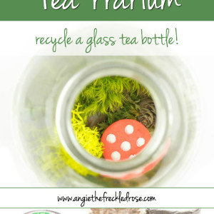 DIY Tea-rrarium
