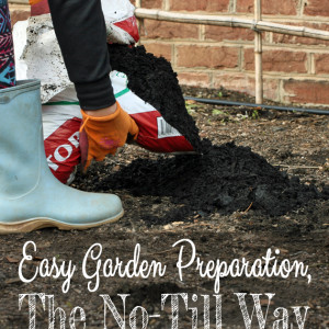 Easy Garden Preparation, the No-Till Way