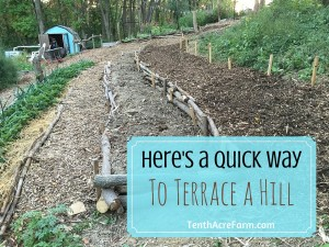 Here s a quick way to terrace a hill homestead bloggers for What does terrace farming mean