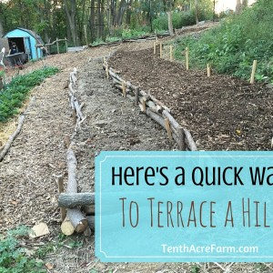 Here's a Quick Way to Terrace a Hill