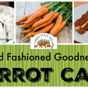 A Recipe for Comfort Food and Old Fashioned Goodness in Carrot Cake