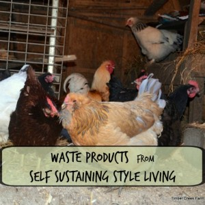 Self Sustaining Living -Reusing Chicken Coop Trash