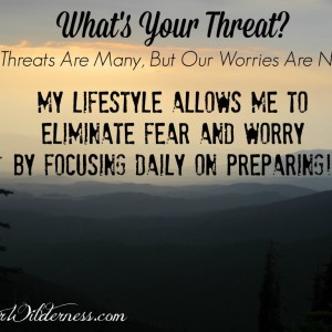 What's Your Threat? Our Threats Are Many, But Our Worries Are None…