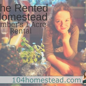The Rental Homestead: Amber's Story