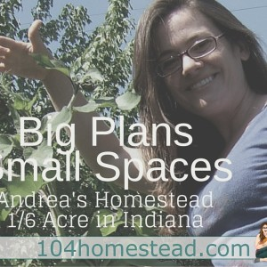 Big Plans in Small Spaces