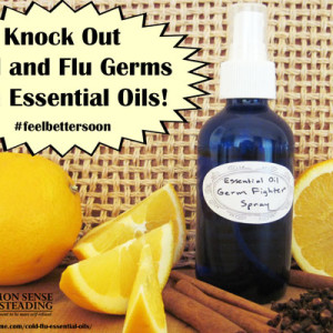 Knock Out Cold and Flu Germs with Essential Oils