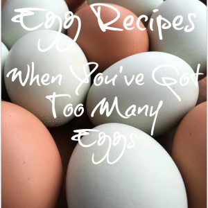 Egg Recipes When You've Got Too Many Eggs