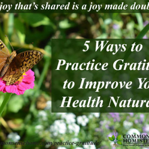 5 Ways to Practice Gratitude to Improve Your Health Naturally