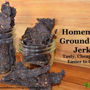 Budget Friendly Ground Beef Jerky Recipe