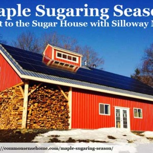 A Visit to the Sugar House Plus Tasty Recipes