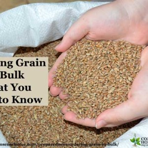 Ordering Grain in Bulk – What You Need to Know