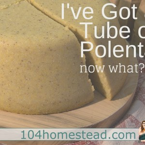 I Have a Tube of Polenta… Now What?
