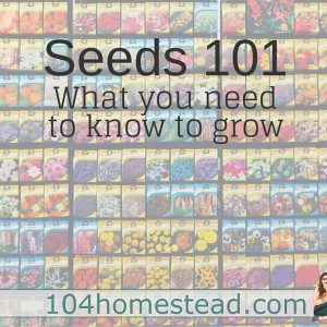 Seeds 101: What you need to know to grow.