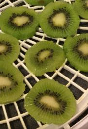 Dehydrating Kiwis and how to use them!