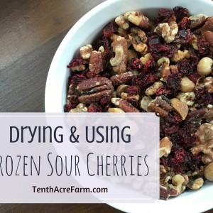 Drying and Using Frozen Sour Cherries