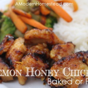 Lemon Honey Chicken – Baked or Fried