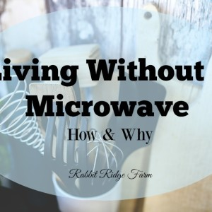 Living Without a Microwave: How & Why