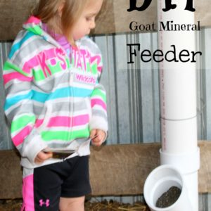 Make Your Own Goat Mineral Feeder