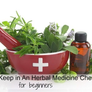 Herbal Medicine Chest for Beginners