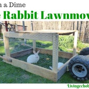 Building a Rabbit Lawnmower
