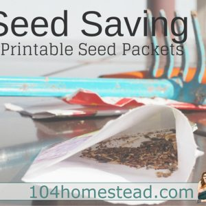 Seed Saving Basics & Free Printable Seed Packets