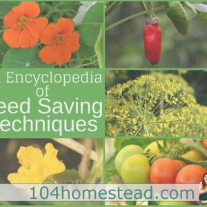Seed Saving 101: A Seed Saving Encyclopedia