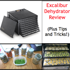 Excalibur Dehydrator Review with Tips and Tricks