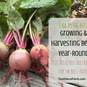 Step to the Beet: Growing and Harvesting Beets Year-Round, Plus Delicious Beet Recipes for the Beet-Hater