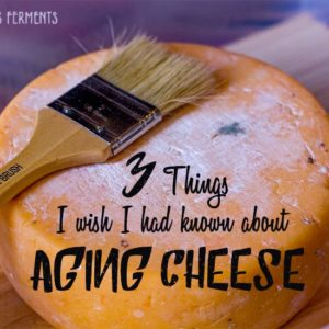 3 Things I wish I had known about Aging Cheeses