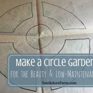 Make a Circle Garden for Beauty and Low-Maintenance