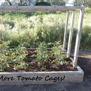 How I Broke Free From Tomato Cages–Forever