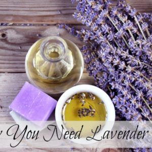 Why You Need Lavender