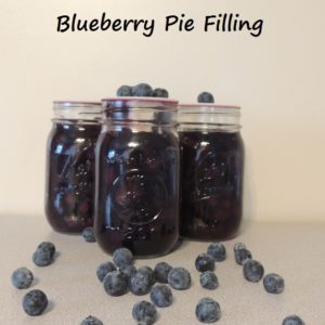 It's Time For Blueberry Pie!