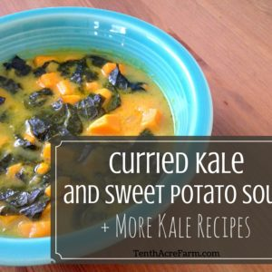 Curried Kale and Sweet Potato Soup + More Kale Recipes