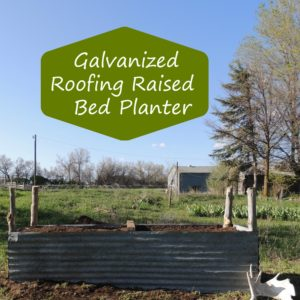 Raise The Roof:  Making Raised Beds From An Old Barn Roof