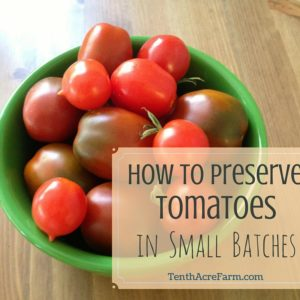 How to Preserve Tomatoes in Small Batches