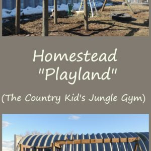 Building A Jungle Gym For The Farm Kids
