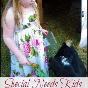 Special Needs Kids on the Homestead
