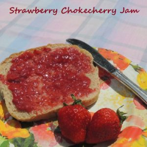 Chokecherry-Strawberry Jam